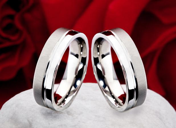 Titanové snubní prsteny JT009 (Snubní prsteny JT009)